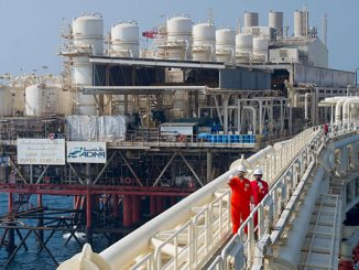 ADNOC manages several offshore oil and gas assets, including the Umm Shaif, Lower Zakum, Upper Zakum, Satah and Umm Al Dalkh fields