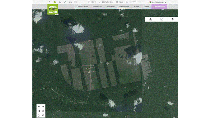 Deforestation in the Peruvian Amazon due to establishment of a cocoa plantation – the type of satellite images, but of a much higher resolution, that Norway intends to buy and offer for free to reveal deforestation (illustration: Global Forest Watch)